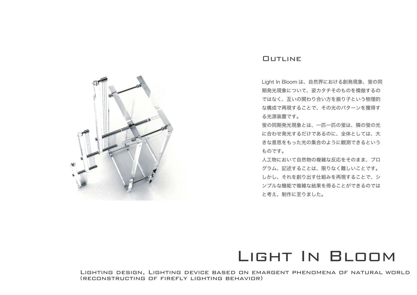 Light In Bloom イメージ 4