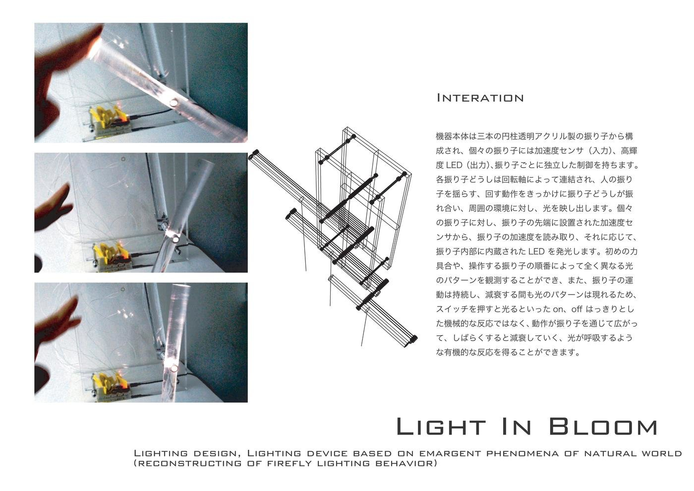Light In Bloom イメージ 5